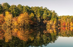 A Lake on a Crisp Fall Morning is a Beautiful Autumn Landscape