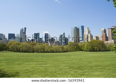 A landscape of Central Park in NYC