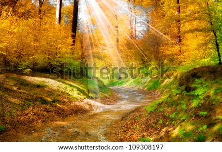 A landscape photo in the colors of autumn