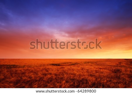 A landscape photo of Famland - harvest and sunset