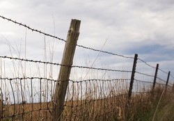 A landscape photograph of a barb wire fence leading down the horizon of an open field. A blue sky with white clouds fills the sky.