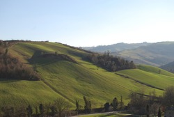 A landscape that offers tranquility: the gentle slope of the green Italian hills, in a sunny day at the end of winter