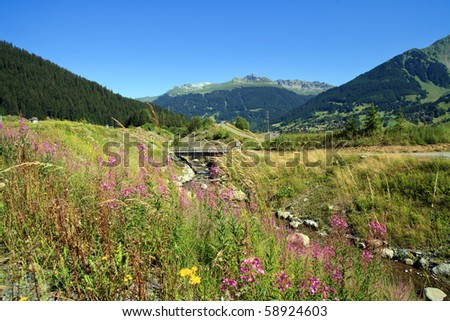 A landscape view of the Engadin region of the Swiss Alps with yellow and purple wildflowers in the foreground and a river along the valley.