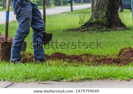 A landscape worker digging a trench during an irrigation system installation project in a yard by a quiet residential street Foto stock ©