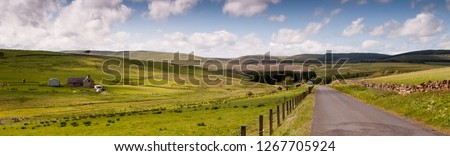 A lane running through moorland and livestock pastures at Myredykes in the Cheviot Hills on the border of England and Scotland. #1267705924
