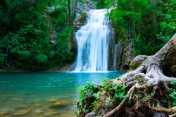 A large beautiful waterfall in a forest with blue water and a tree.