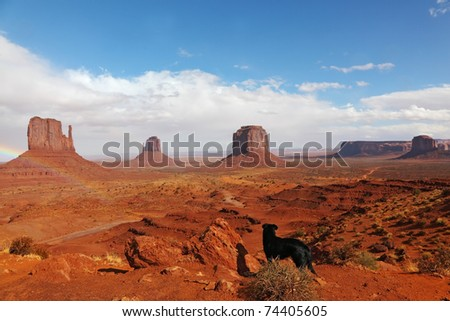 "A large black dog in the red desert. The famous ""Mittens"" in Monument Valley after the rain"