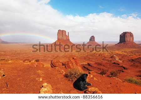 "A large black dog under a rainbow in the red desert. The famous ""Mittens"" in Monument Valley after the rain"