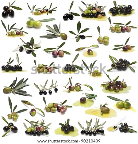 A large collection of photos of different varieties of olives isolated on white background.