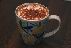 A large cup of hot chocolate with cinnamon and other spices. Milk foam
