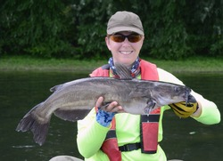 A large dark gray channel catfish fish being held horizontally by smiling short haired woman in a baseball cap and gloves on a bright river on a bright summer day