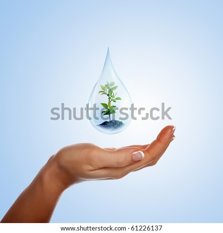 A large drop of water with sprout inside and hands to support it. The symbol of environmental protection.