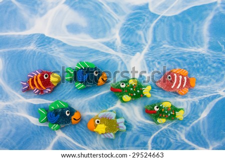 ... colourful-fish-sitting-on-blue-water-background-colourful-fish
