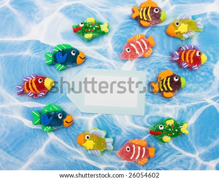 of colourful fish with blank gift tag sitting on blue water background ...