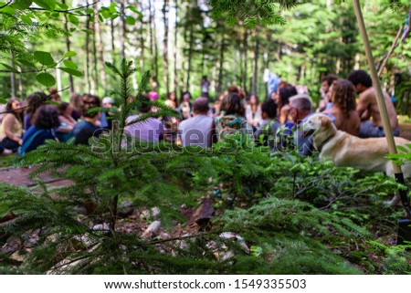 A large group of people from all backgrounds are seen sitting together in a circle at a forest campsite, with a golden retriever dog during a mindful retreat.