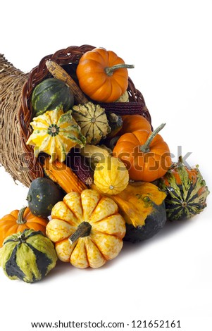 A large group of vegetables spill from a gourd on a white backdrop.
