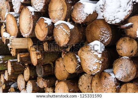 A large pile of snow covered logs