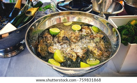A large platter with delikatesnye oysters on ice with lime served with champagne and herbs. Serving. The horizontal frame. #759831868