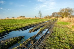 A large puddle and mud on a dirt road, green fields and dry grass