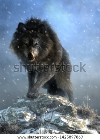 A large shaggy dire wolf bares its wicked teeth as it glares at you with deep blue eyes. The ice age predator growls and steps over snow covered rocks as it advances. 3D Rendering Photo stock ©
