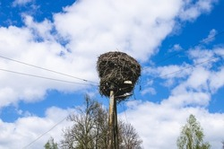 A large stork's nest from below, shot on an electric pole against a blue sky