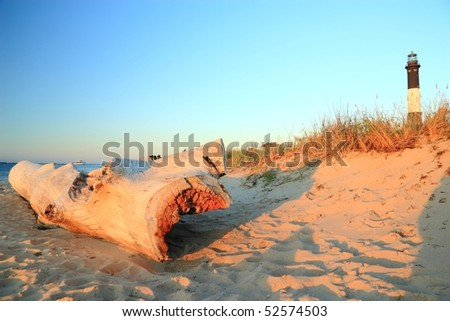 A large weathered driftwood log on the beach on Long Island Sound with dunes and the Fire Island Lighthouse behind