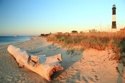 A large weathered driftwood log on the beach on Long Island Sound with the Fire Island Lighthouse behind in the late afternoon sun.