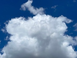 A large white cloud floated in the blue sky.