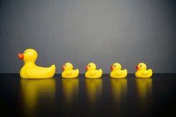 A large yellow rubber duck with four smaller rubber ducks in a row behind.