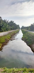 A lessened ditch in the middle of the unpaved road was taken after the paddy field harvest.