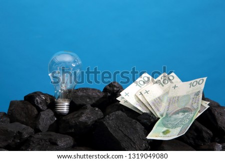 A light bulb and Polish banknotes lie on a hard coal like a symbol of energy and wealth.