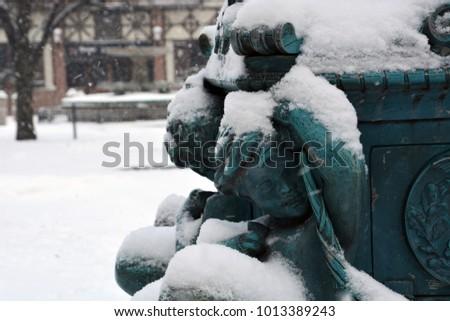 a light snow gathers on the...
