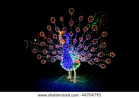 A lighted Christmas peacock shows its vibrant colors and beautiful details throughout the string of lighted bulbs..