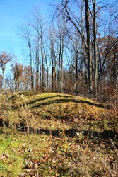 A linear shaped Native American Effigy Mound at Lizard Mound County Park in Farmington, Wisconsin on a warm autumn morning with shadows cast over the mound from the forest beyond.