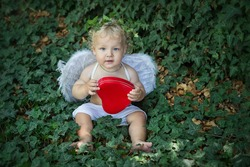 A little angel boy with white wings smiling holding a red heart sitting against a background of live green ivy.