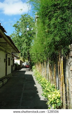 A little backlane in Kuta, Bali fringed with Bamboo contrasting against the concrete house - stock photo