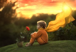 A little boy, a prince, sits with a rose flower at sunset