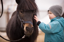 A little boy in turquoise overalls stroking an Icelandic pony horse with a funny forelock. The kid thanks the horse after hippotherapy. Brown pony looking at the camera