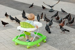 A little boy is exploring the world by watching pigeons in the open air. The concept of a happy childhood