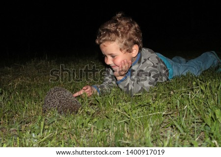 A little boy, lying on the grass, touches the hedgehog #1400917019