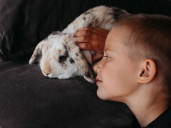 A little boy on a dark background looks gently at his pet rabbit and strokes his hand.