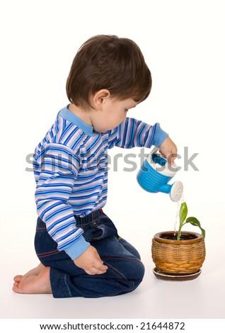 a little boy pours a plant