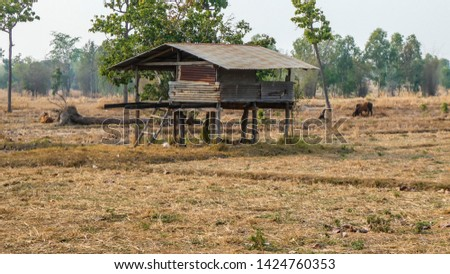 A little cottage in the countryside in the dry countryside of Thailand #1424760353