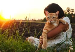 A Little girl in white dress feeling relaxed in beautiful meadow at gorgeous sunsets. Girl carry a brown kitten in glass field enjoying nature.