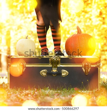 A little girl is wearing black and orange socks outside with fall leaves and halloween pumpkins for a holiday theme or celebration idea.