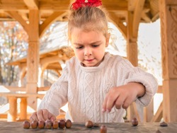 A little girl plays with the fruits of oak - brown acorns on a wooden table. Autumn gifts. Tree fruits. Childhood. Outdoor games concept.
