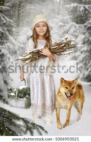 a little girl with a dog shiba...