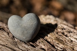 A Little Heart from Stone