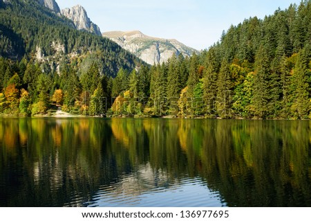 A little lake in a forest on a day in autumn.
