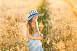 A little pretty girl collects ears of ripe rye for a bouquet. The child is dressed in a striped dress and hat.